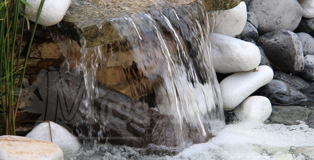Jardin aquatique montpellier - Jardin d essence montpellier ...