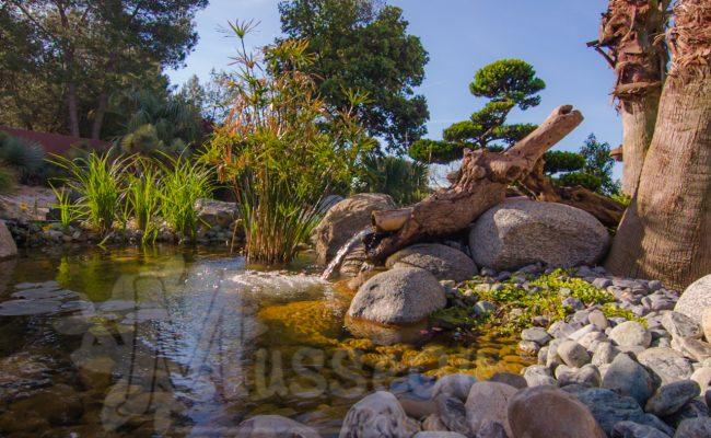 jardin d'eau