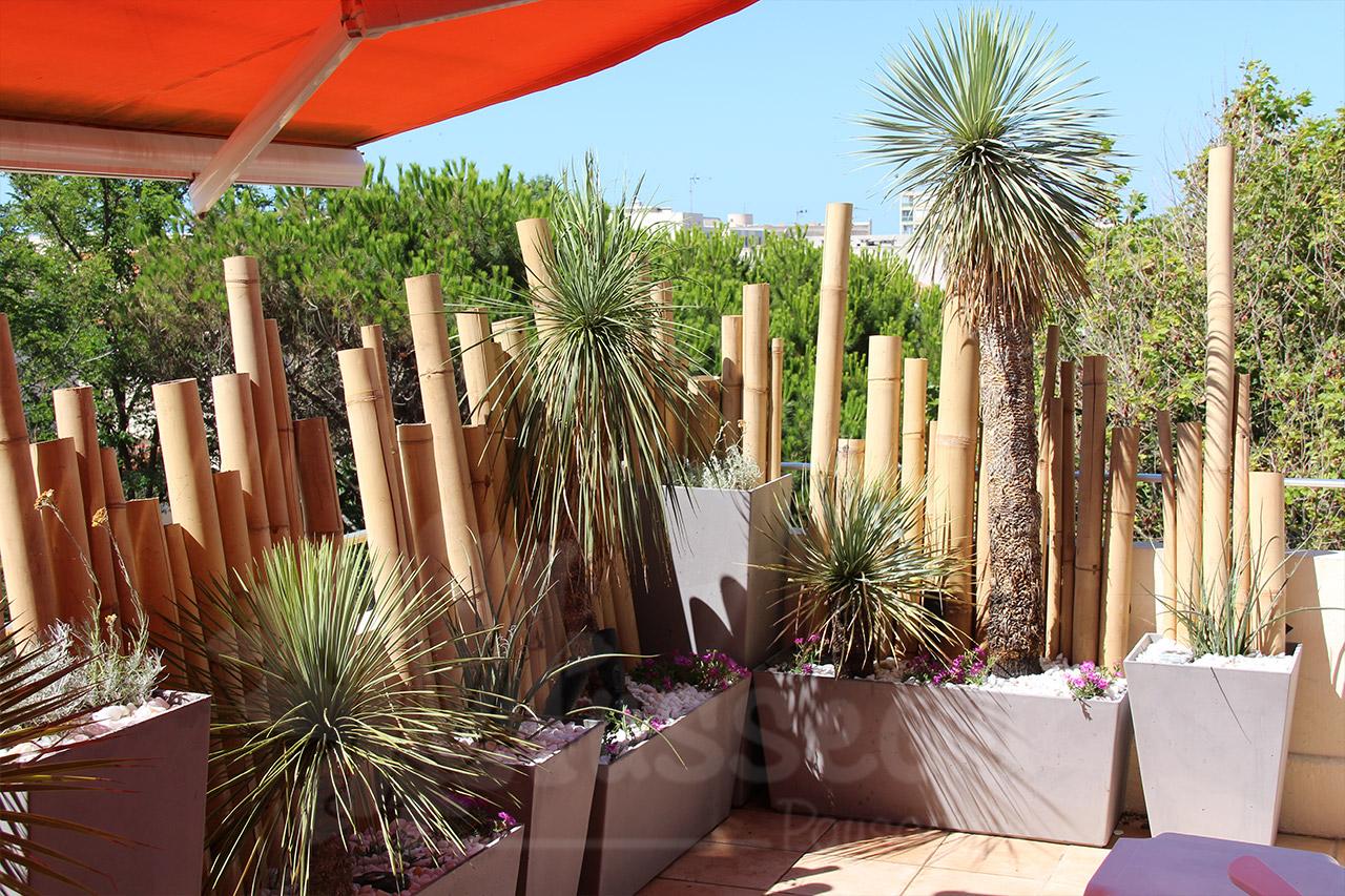 Terrasse et jardin Montpellier
