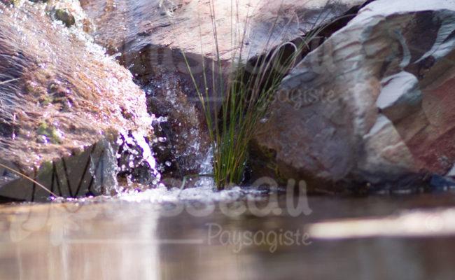 jardin-aquatique-montpellier-2
