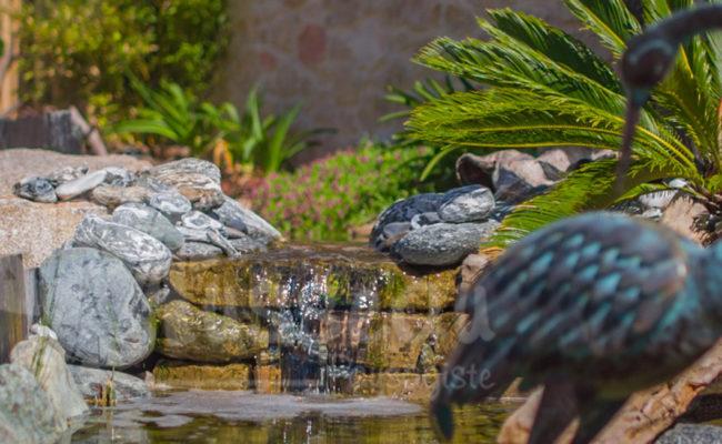 Jardin aquatique Montpellier