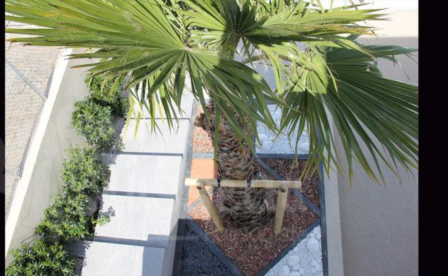 Paysagiste Montpellier – terrasse